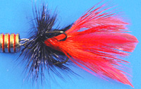 Black/red fly